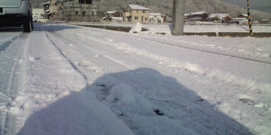 今シーズン初の雪
