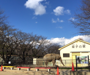 写真 2016-01-15 13 13 38